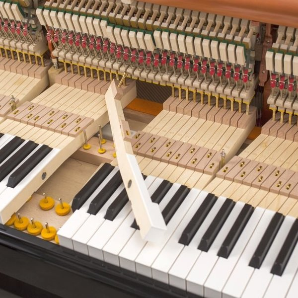 122-detail-22-keys-felts-2-web.jpg