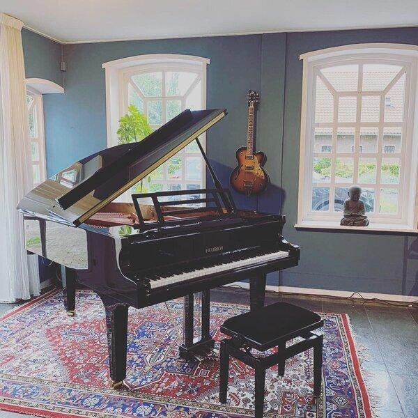 feurich-179-dynamic-kaldenbach-piano-1.jpg