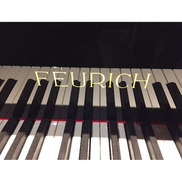 FEURICH218-concert.jpg