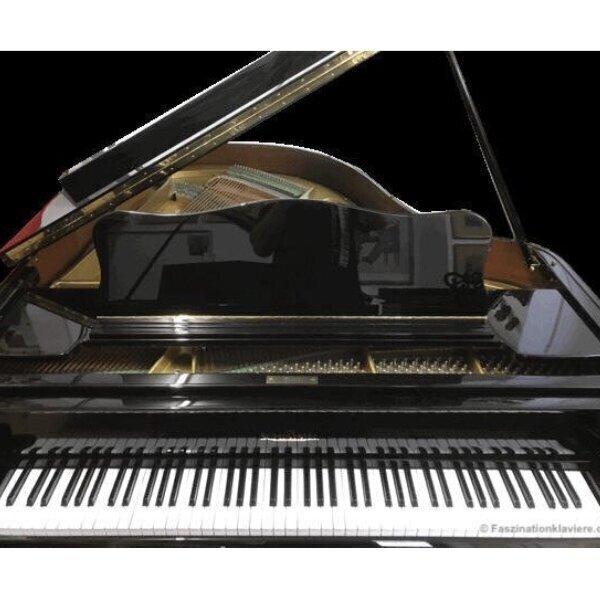 schimmel-178-t-vleugel-kaldenbach-pianowinkel-8.jpg